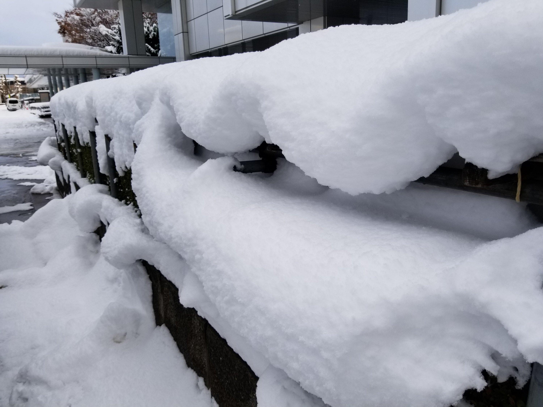 青森市雪スゲー降った